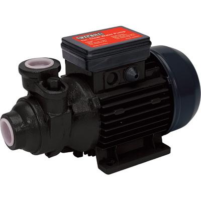1/2 HP Cast Iron Pump